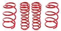 Mustang BMR Lowering Spring Kit (05-14) Drag Race