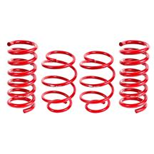 Mustang BMR Performance Lowering Springs (15-17)