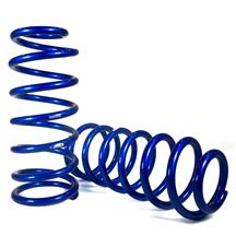 Mustang Eibach Rear Drag Spring Kit (79-04)