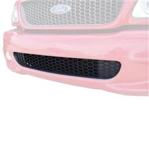 F-150 SVT Lightning Front Lower Grille (99-00) XL3Z8200AA