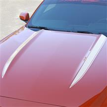 Mustang Cowl Hood Stripe Kit  - White (15-17)