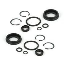 Mustang Rear Caliper Piston Seal Kit (94-04)