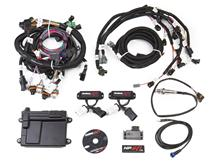 Mustang Holley 2V Engine Management System (99-04) 4.6/5.4