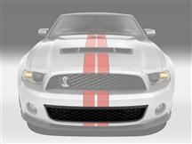 Mustang GT500 Front Lower Grille (10-12)