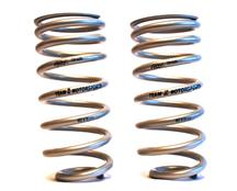 Mustang Team Z Rear Drag Springs (79-93)