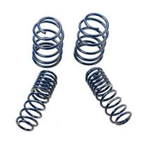 Mustang Ford Racing Lowering N-Spring Kit (05-14)