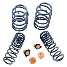 Mustang Ford Racing Boss 302 Lowering Springs (12-13)