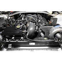 Mustang Procharger GT350 H.O. Stage II Supercharger Kit  - P-1SC-1 - Intercooled (15-17)