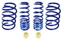 Mustang Roush Extreme Lowering Spring Kit (05-14)