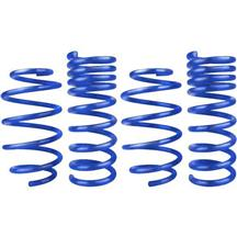 Steeda Mustang Sport Springs - Progressive Rate (15-20) 5.0/V6 555-8210