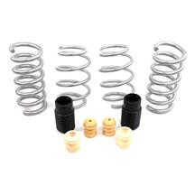 Mustang SVE Progressive Rate Lowering Springs (15-16)