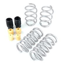 Mustang SVE Progressive Rate Lowering Springs (15-17)