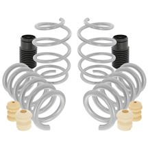 Mustang SVE Progressive Rate Lowering Springs (15-20)